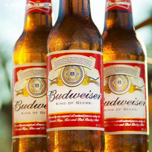Bud alcofests