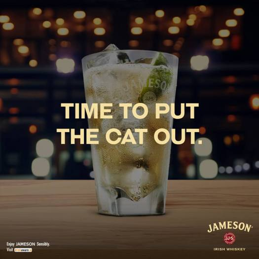 jameson cat out