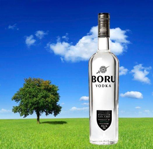 boru health toast